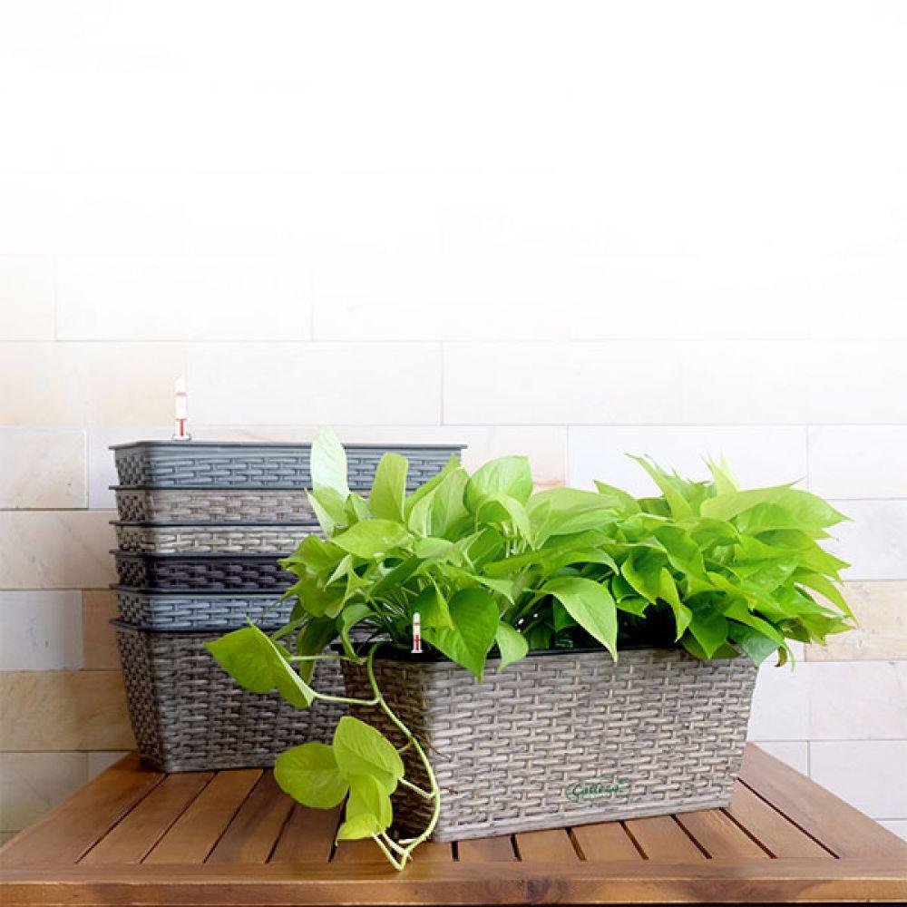 Thin Wicker Planter - Weaved Flat Planter Rectangular