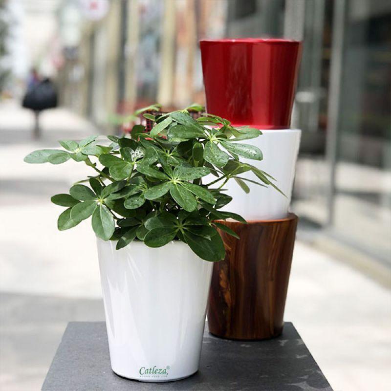 Round Tapered Planter