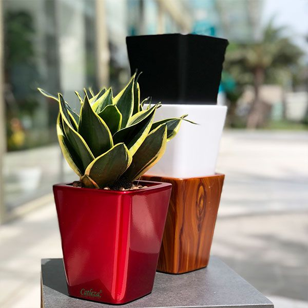 Square Tapered Planter