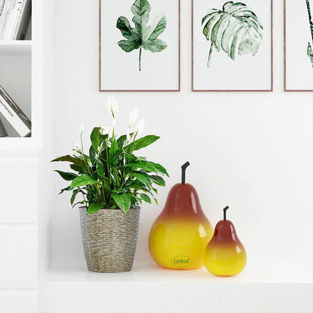 Pear Decorative Fruit